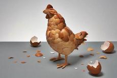 Gallina con huevos